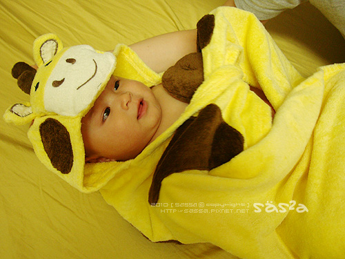 長頸鹿浴巾