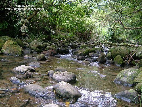 農場裡的小溪