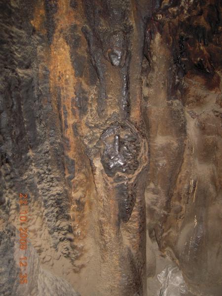 洞裡的石頭像化石一樣!.jpg