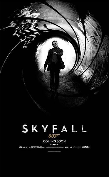 Leo_skyfall