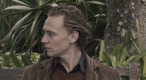Archipelago-tom-hiddleston-24886100-500-275.jpg