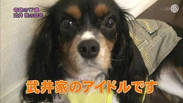 301(20110724)oshareism武井咲.avi_20110731_174550.jpg