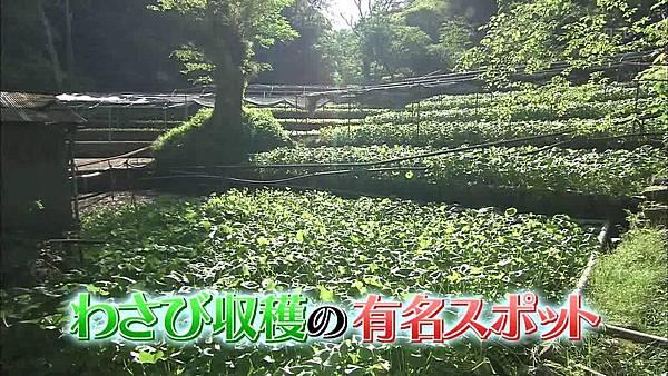 293(20110529)oshareism観月ありさ.avi_000409175.jpg