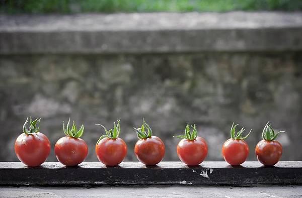 什麼是番茄鐘?(上):用番茄中也能做好時間管理?