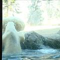 旭川動物園的北極熊