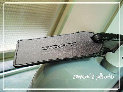 SonyBravia12.jpg