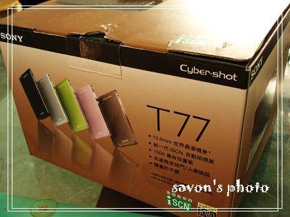 T7711.jpg