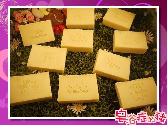 B5卡斯提爾乳霜皂全體.jpg