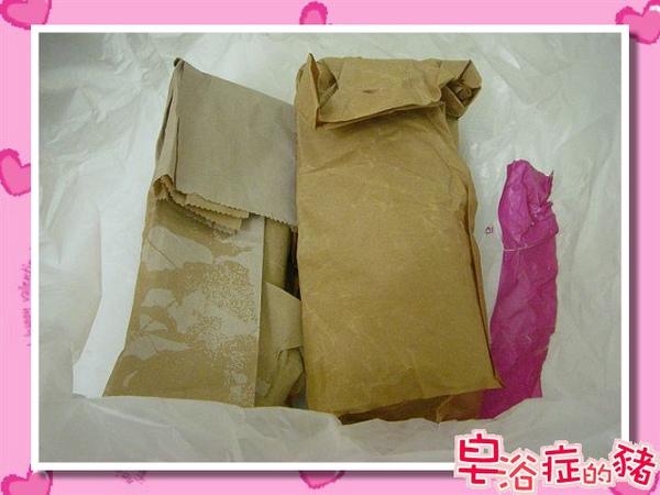 紙袋內就是媽咪珍貴的母乳冰.jpg