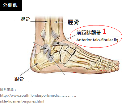 Ankle-sprains_physiotherapy 中1