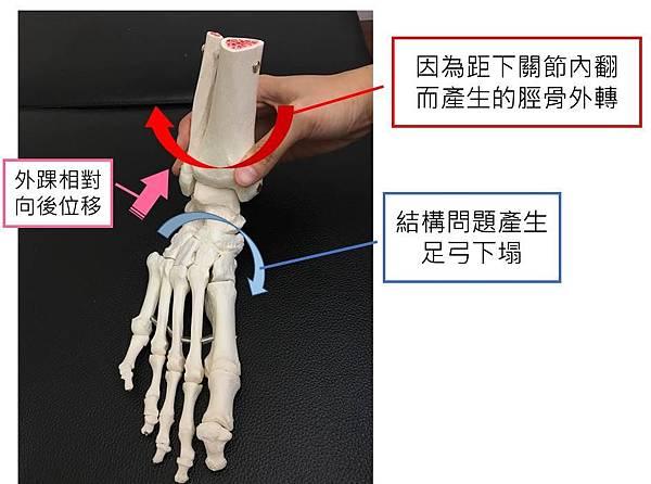 mechanism.jpg