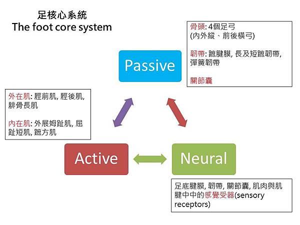 foot core system.jpg