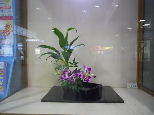 2009京都之旅姬路城9