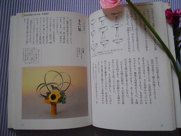 DSCN0094.JPG