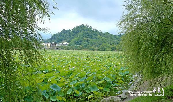 東勢林業文化園區7.jpg