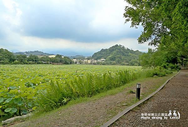 東勢林業文化園區4.jpg