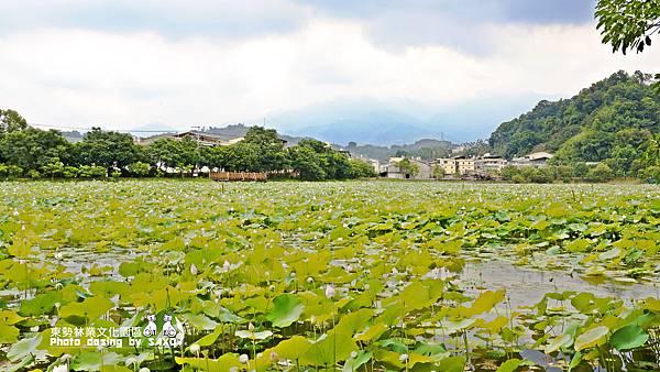 東勢林業文化園區2.jpg