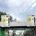 tch_12_blog_022.JPG