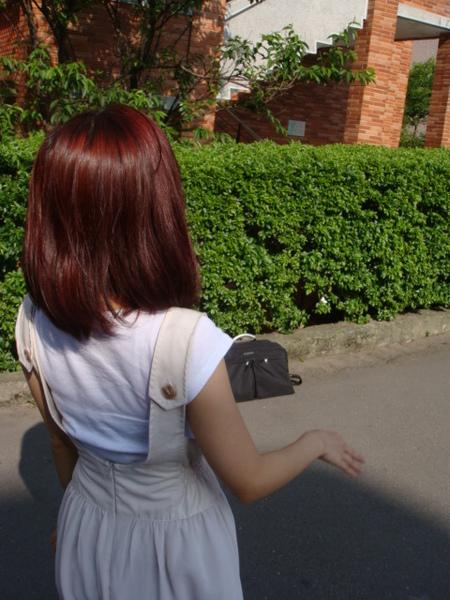 我的小紅髮