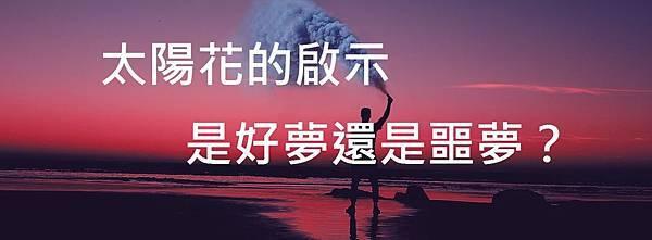 aziz-acharki-7nsqPSnYCoY-unsplash 太陽花的啟示─是好夢還是噩夢?.jpg