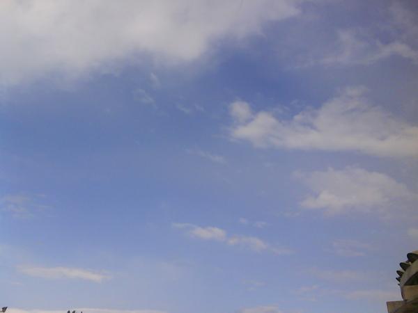 20090413FJU雨過天晴-3