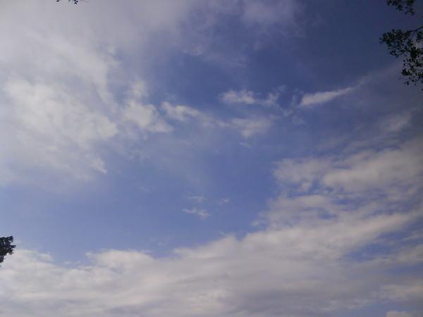 20090413FJU雨過天晴-6