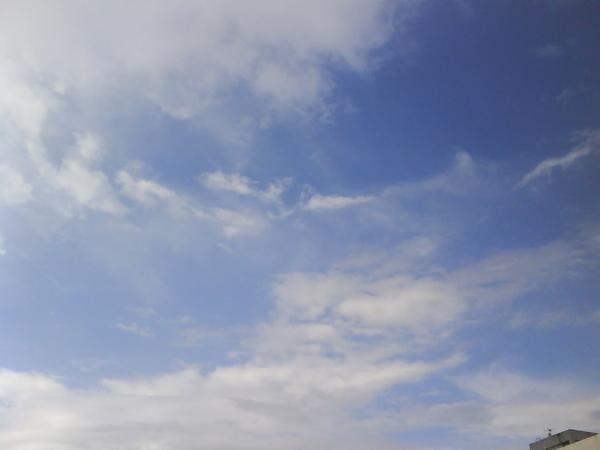 20090413FJU雨過天晴-9