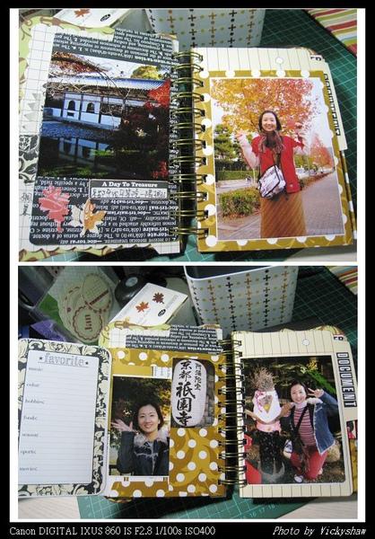 2008 Japan 4.jpg