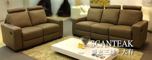 C19385-機能皮沙發(咖啡)
