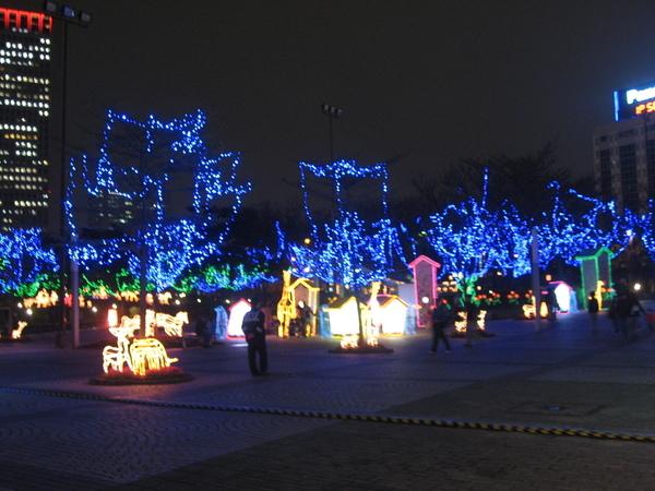 2008.02.20 元宵前夜賞花燈 - 2