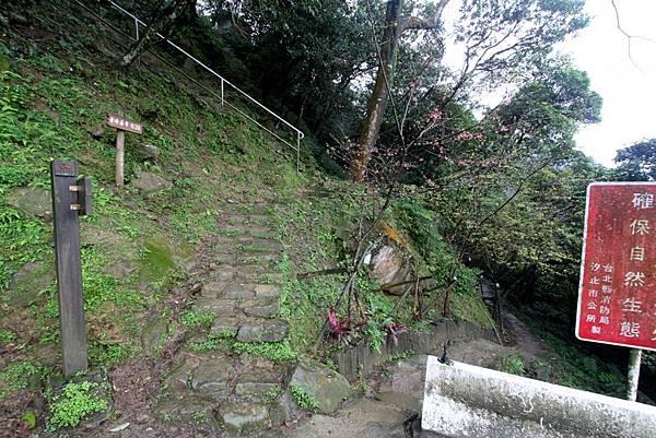 2012.02.19 秀峰瀑布