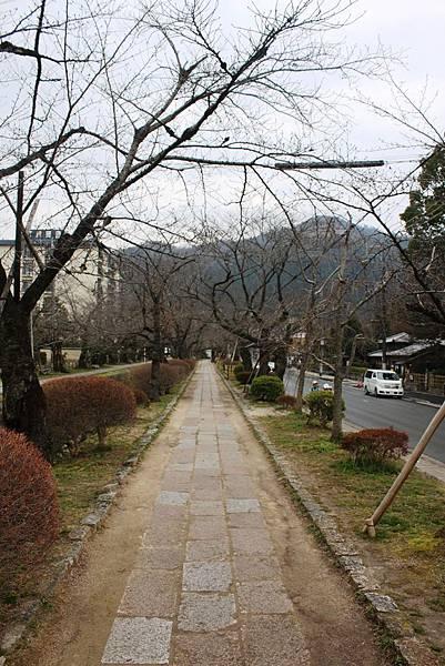 2015春,京都 - 003