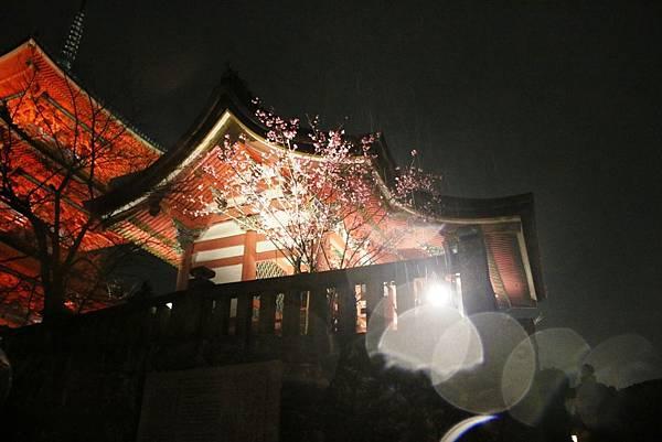 2015春,京都 - 032