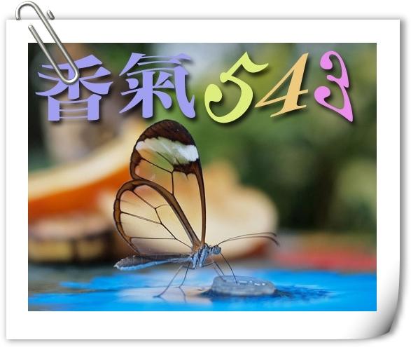 香氣543 代表圖frame