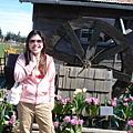 tulip 026.jpg