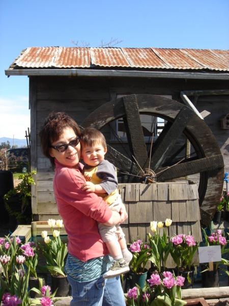 tulip 028.jpg