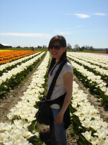 tulip 038.jpg