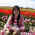 tulip 050.jpg