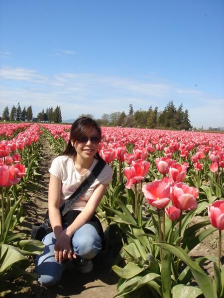 tulip 051.jpg