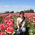 tulip 052.jpg