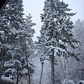原來年底又下雪