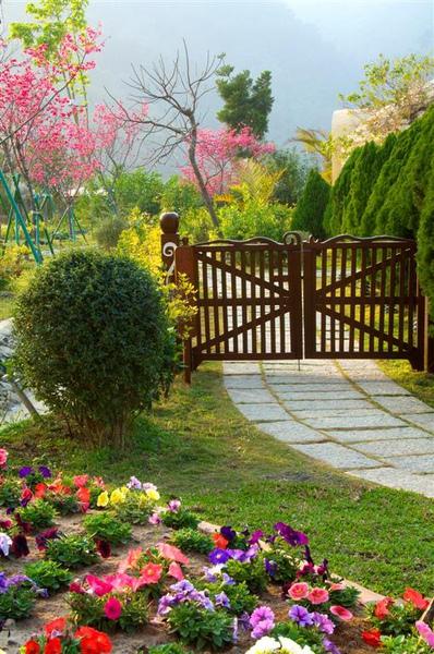 花園花卉_0006 (Large).jpg