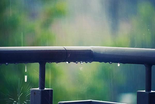 rain-drops-water-82513.jpeg