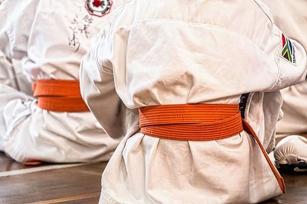 karate-1665606_1280.jpg