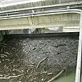 石門水庫洩洪的閘門