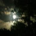 這一天的月很漂亮!