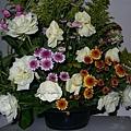 老媽插的花