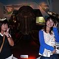 長毛象&大象&老賴