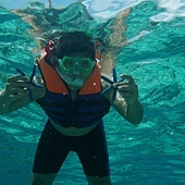 菲律賓宿霧海底生物