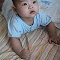 2011-08-01-08.JPG